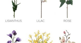 Spring brides can find all of their favorite wedding flowers at Afloral.com. Fr...