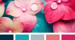 Color Palette #847