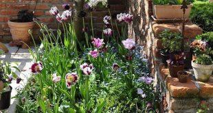 Coole 41 kleine Blumengarten für den Frühling müssen Sie decoarchi.com