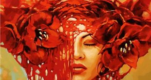 Red Flower Beauty DIY Paint by Number Kit Framed/ Unframed Canvas + Paint + Brush Wall Decor 40x50cm