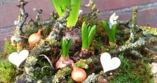 Spring Decade, Beautiful Flower Nest ~ Spring Decoration ~ Spring