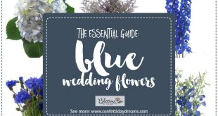 The Essential Blue Wedding Flowers Guide: Types of Blue Flowers, Names, Seasons + Pics
